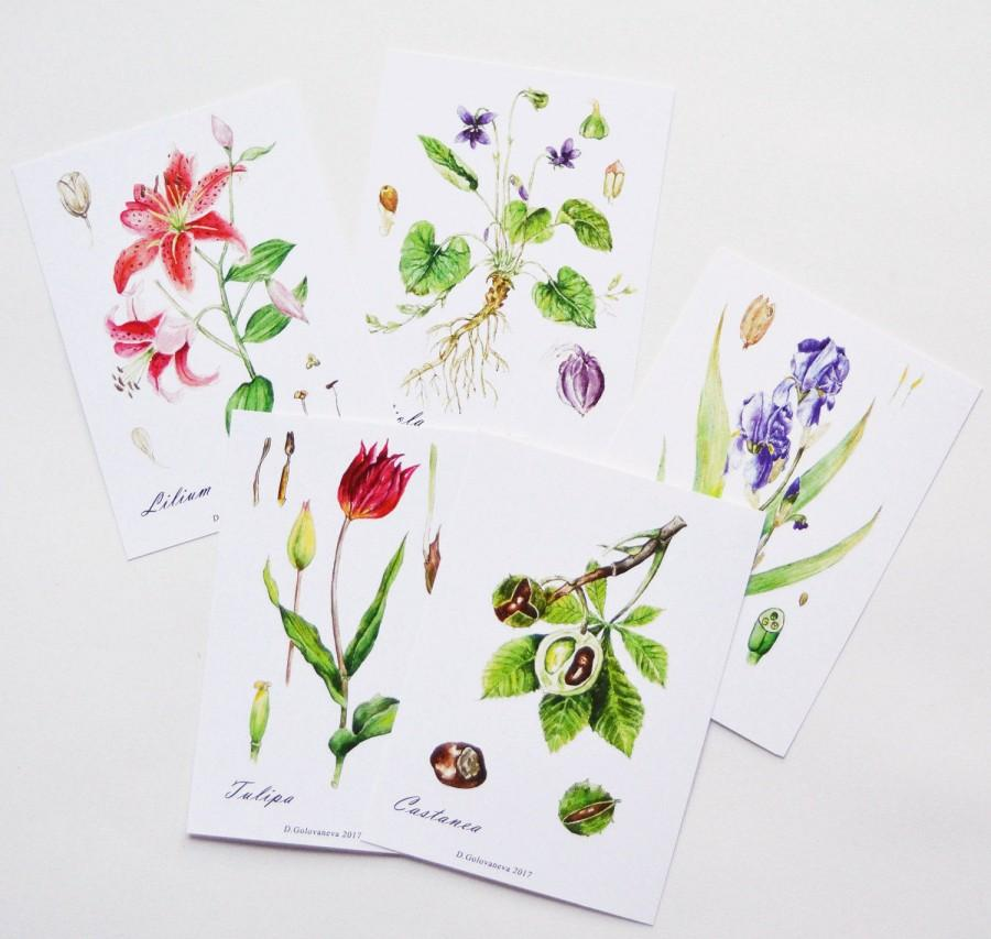 Mariage - Watercolor cards set