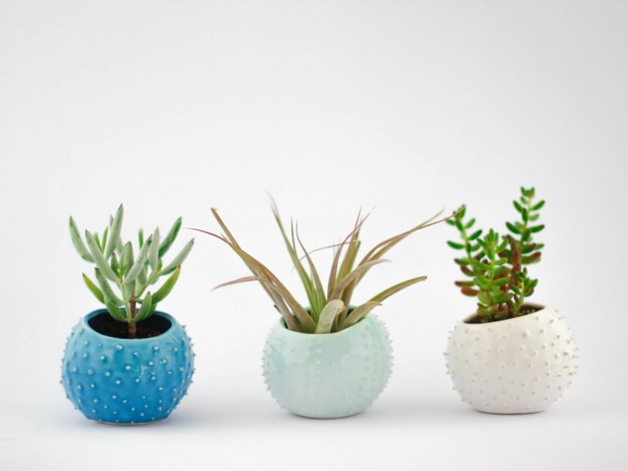 Düğün - Set of 3 small handmade ceramic succulent planters/ air planters/ turquoise/ white/ mint/ flower pot/ indoor garden/ planter cover