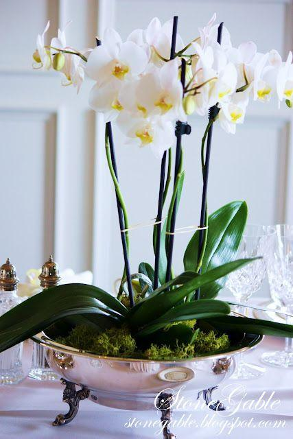 """Свадьба - StoneGable: CHINA ORCHIDS And """"OPEN HOUSE"""""""