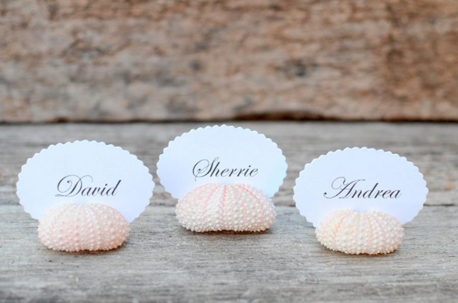 زفاف - 10 Sea Urchin Shell Place Card Holders for Beach Wedding - Natural Pink - Reception Table Chic Decor - Guest Escort Favor Ocean Nautical