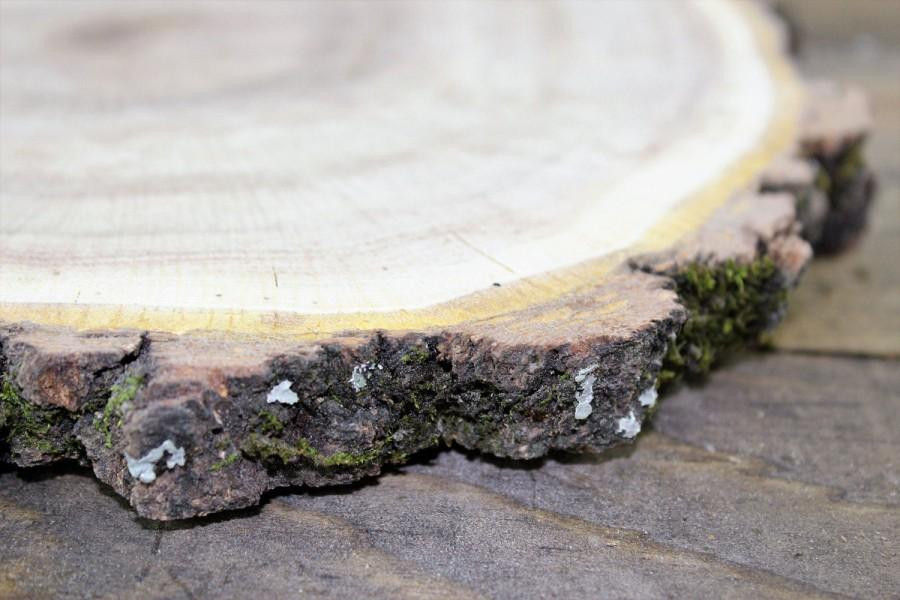 Mariage - Wood Slice (Oak, kiln dried), Wood slab, Large wood slice, Candleholder, Wood Round, wood centerpiece, charger, wedding, rustic, wood cookie
