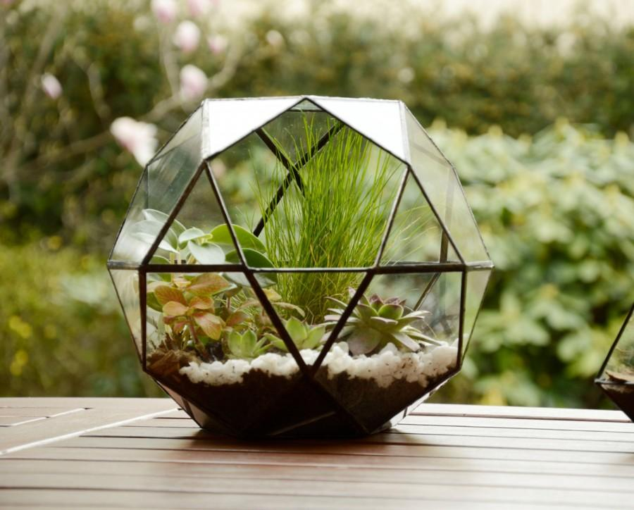 Large Glass Terrarium Glass Terrarium Geometric Terrarium