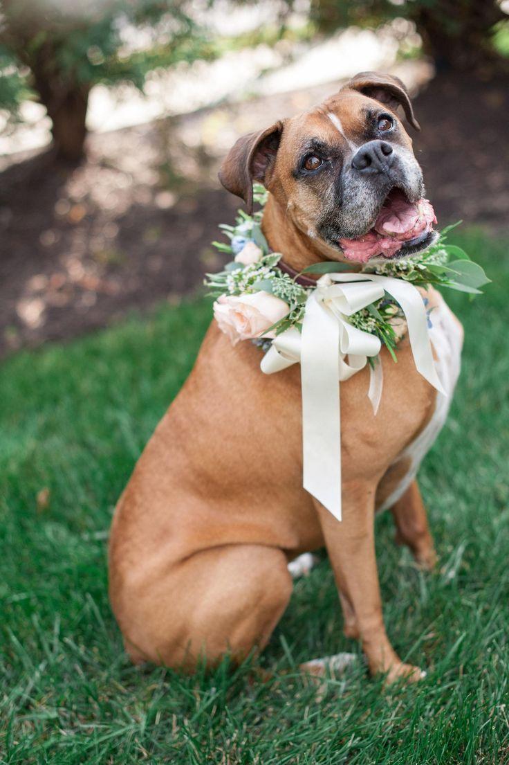 Свадьба - Vintage Romance & Whimsy Styled Shoot