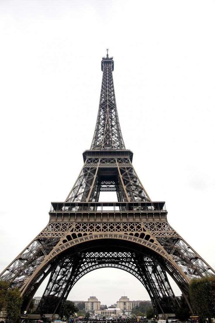 Mariage - September In Paris (DAMSEL IN DIOR)
