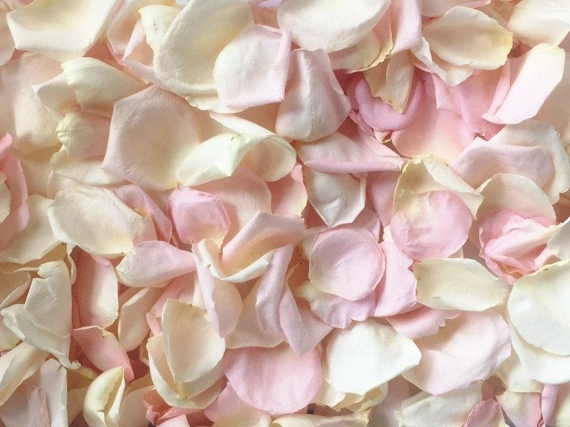 Свадьба - Rose Petals, Ivory & Blush blend, REAL freeze dried rose petals, perfectly preserved