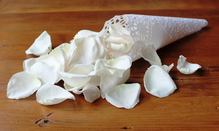 Wedding - Freeze Dried Rose Petals, Ivory, 100 cups of REAL rose petals, perfectly preserved