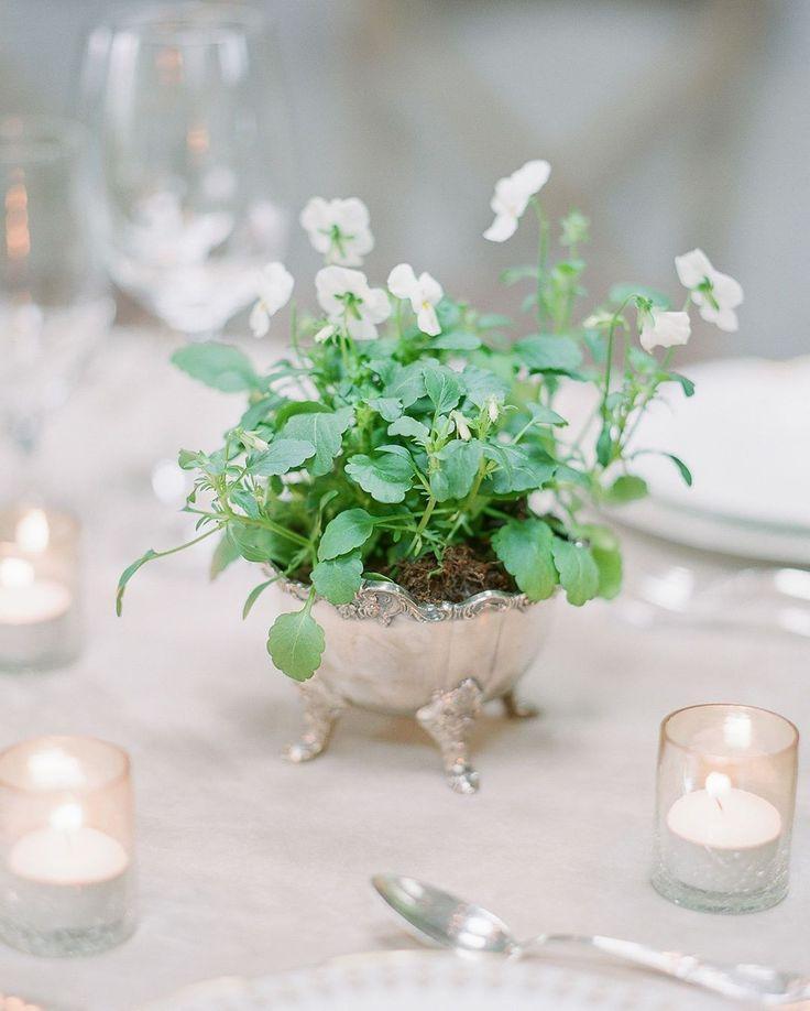 Mariage - Wedding   Event Details