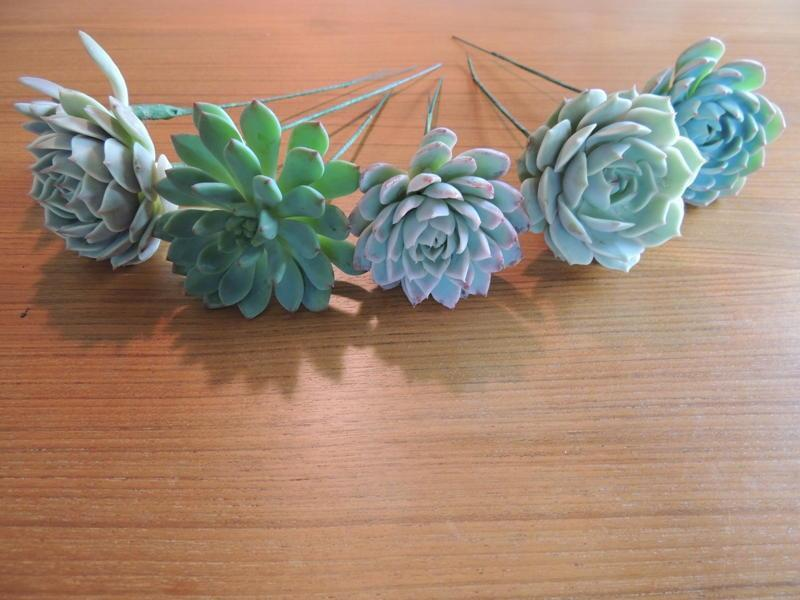 Wedding - 14 Wired Succulents for DIY bouquet