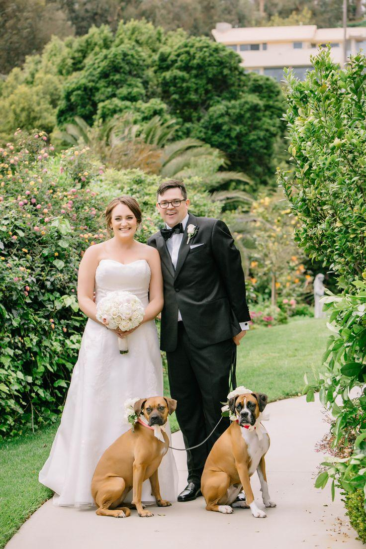 Dog handler for wedding