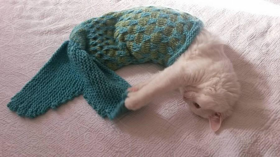 Hochzeit - Mermaid Blanket Knitting Instructions – Pet Photo Prop - Cat mermaid blanket - Dog mermaid blanket - Pet mermaid blanket