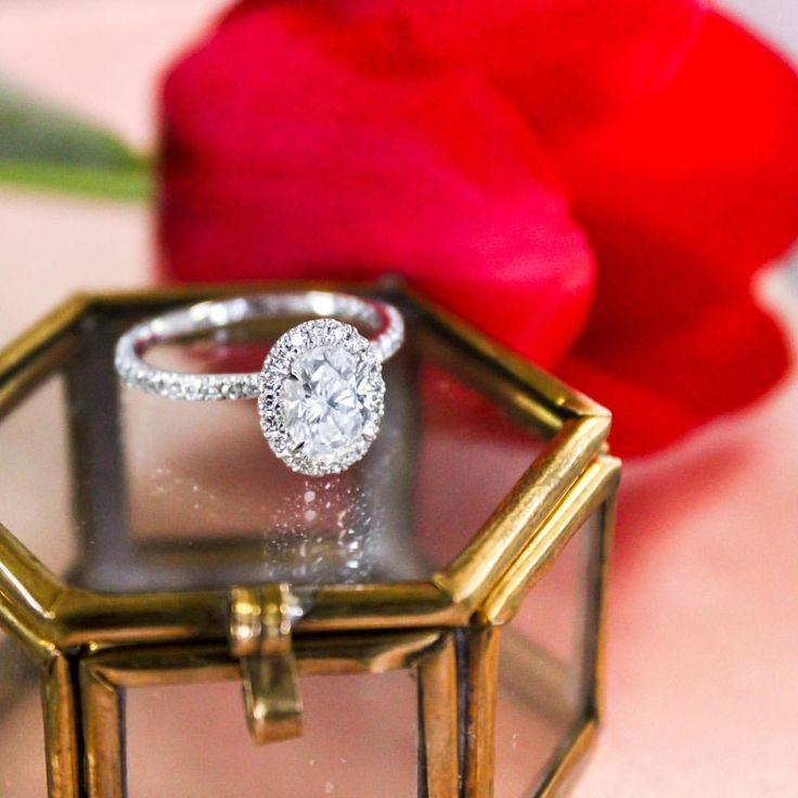 "زفاف - Brilliant Earth On Instagram: ""Wishing You A Valentine's Day Full Of Sweet Surprises. #BrilliantEarth #ValentinesDay #shesaidyes #engagementring #love"""