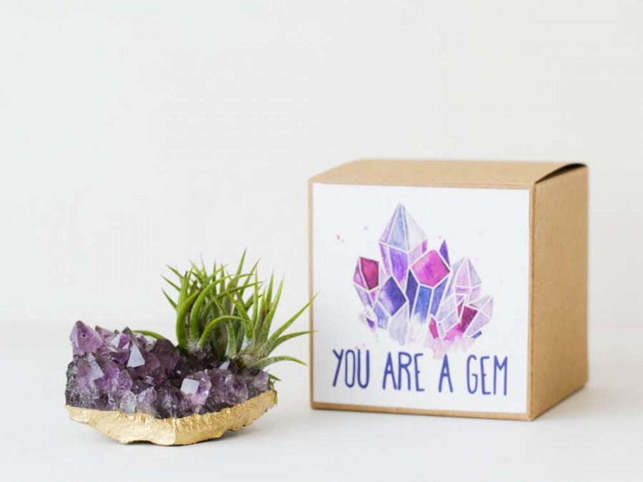 Amethyst Crystal Air Plant Birthday Gift Best Friend Graduation Mom You Are A Gem Long Distance Thank