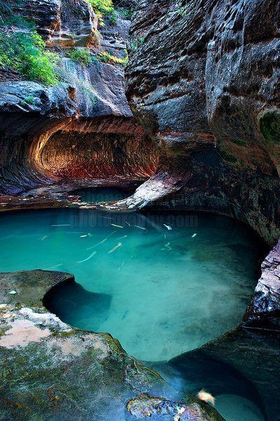 Mariage - Canyons & Sandstone - Wild-Earth-Illuminations