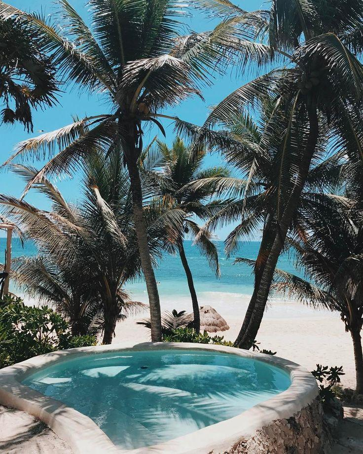 Mariage - Tropical Honeymoon