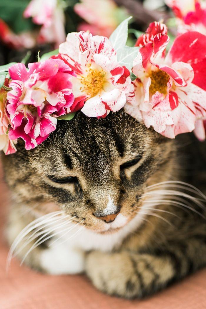 Boda - DIY Rose Flower Crown