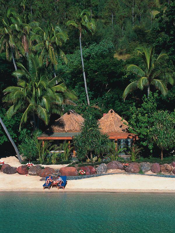 Hochzeit - Turtle Island
