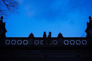 Wedding - Camilla And Carol's Central Park December Elopement