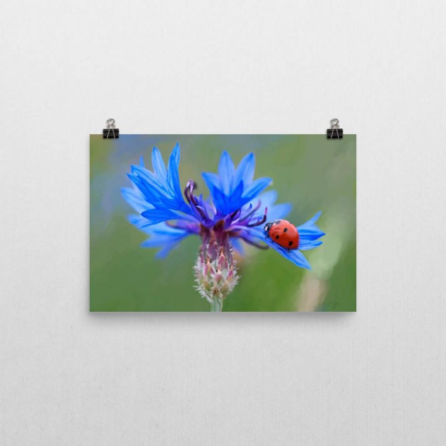 Lady Bug And Cornflower Oil Painting Print. Ladybug Living Room Home ...