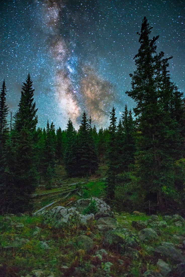 Свадьба - A Camping Wiev
