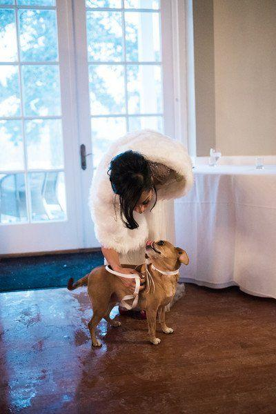 Mariage - Glamorous New York Winter Wedding
