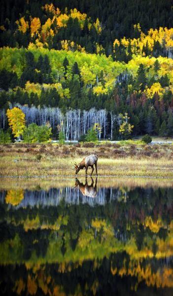 زفاف - Colorado Kicks In $362,700 To Reopen Rocky Mountain National Park