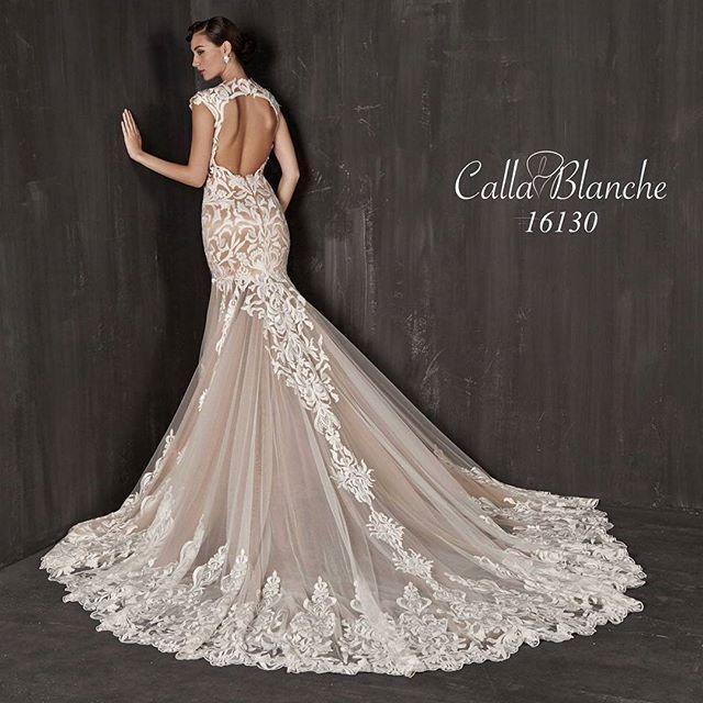 زفاف - Couture Bridal Gowns