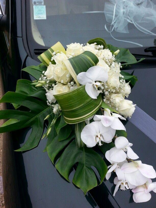 زفاف - Wedding