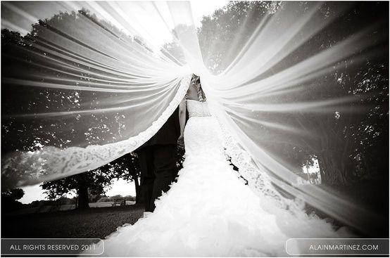 Wedding - Best Wedding