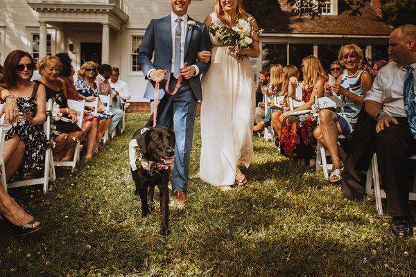 Mariage - Summer Maryland Waterfront Wedding