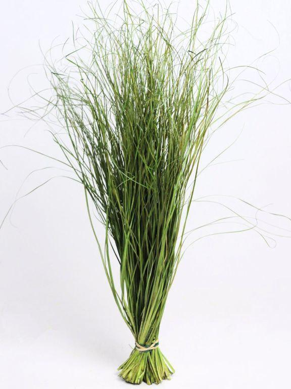 Hochzeit - dried grass bunch