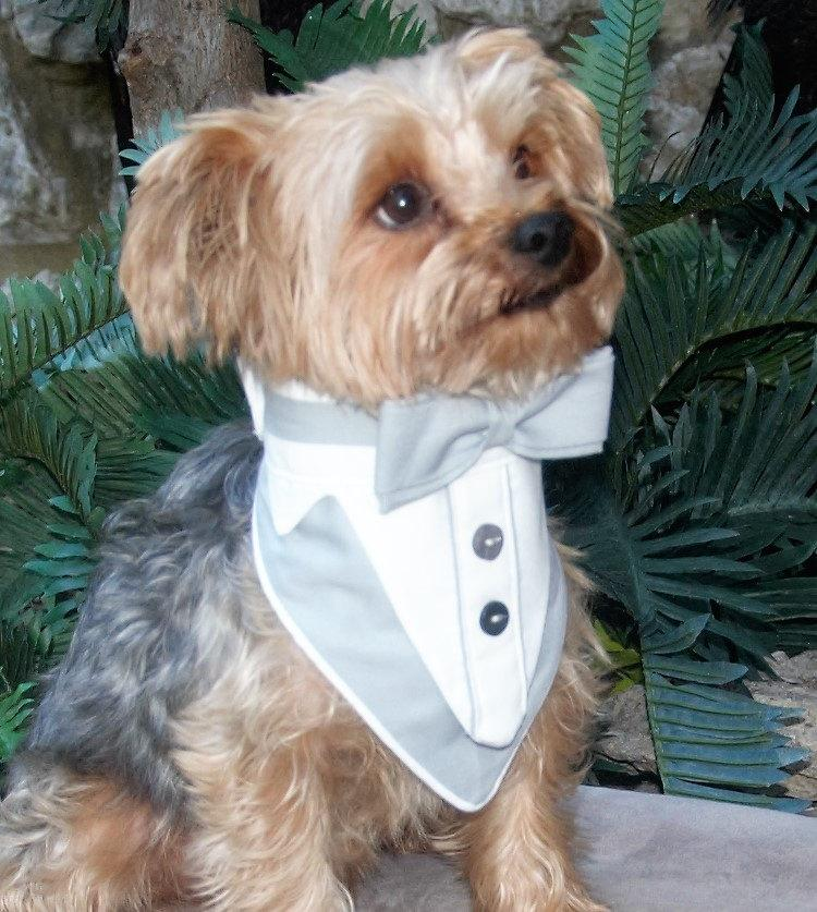 Mariage - Dog Tuxedo, Dog Wedding Attire, Dog Tux, Dog Formal Wear, Tuxedo Dog Collar, Gray and White Tuxedo, Boy Wedding Clothes