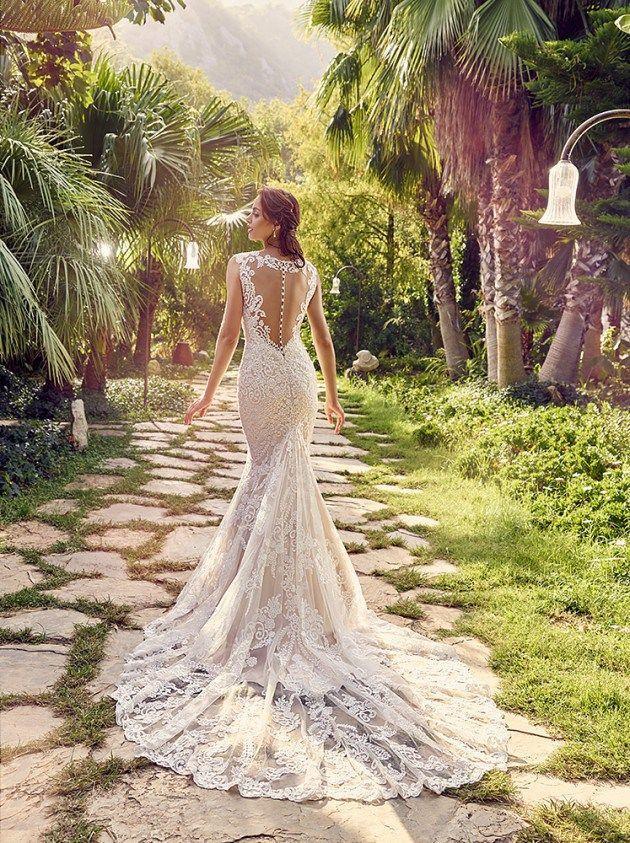 Wedding - .:: BRIDAL DREAMS ::.