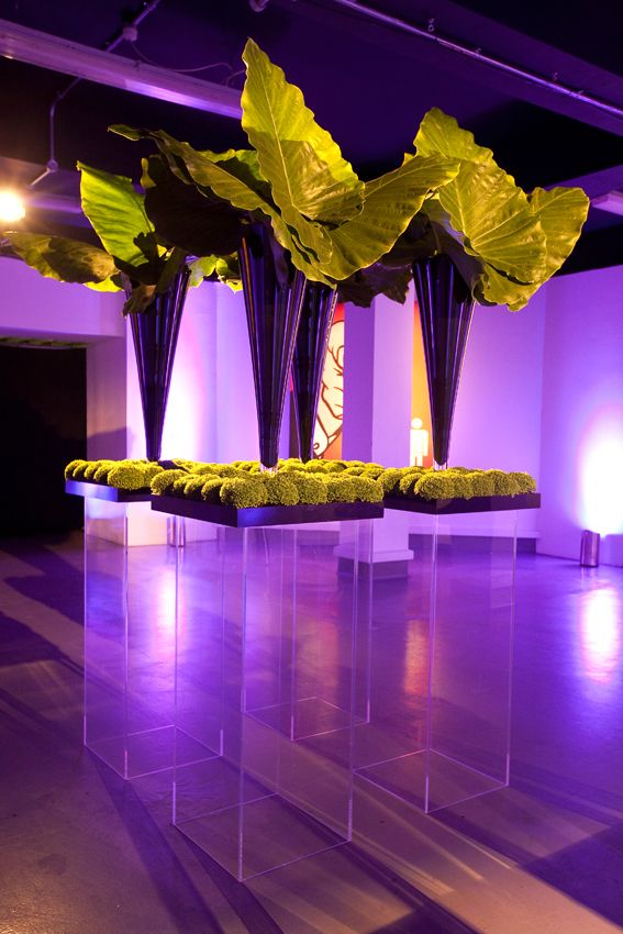 Wedding - Creative Events Decor