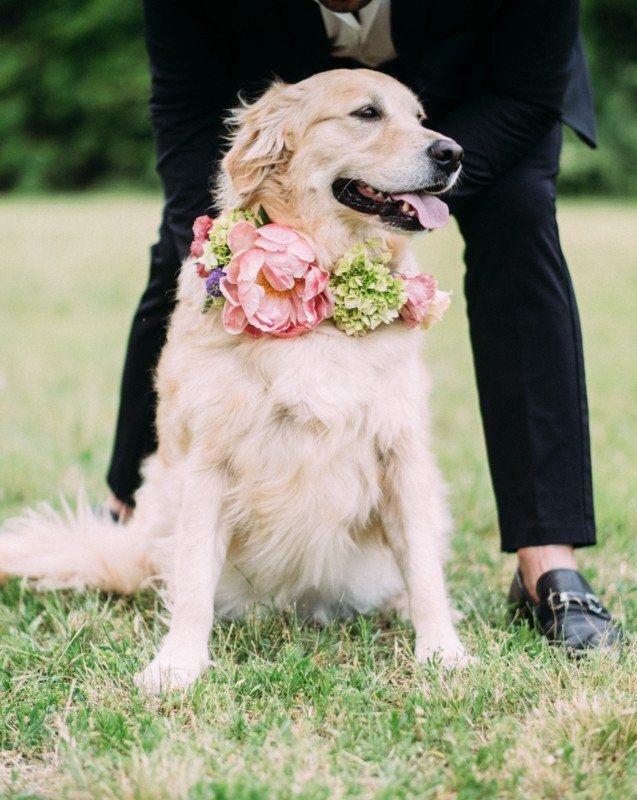 Mariage - 23 Wedding Flower Ideas That Are Just Really Pretty