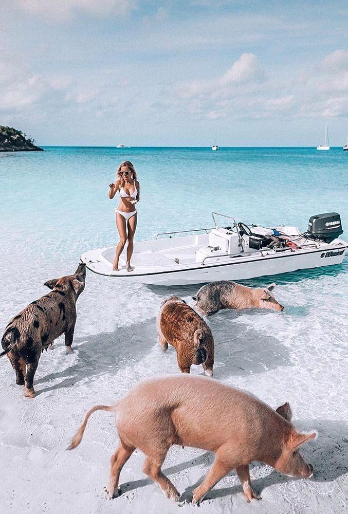 زفاف - 36 Most Popular Honeymoon Beach Ideas In 2018