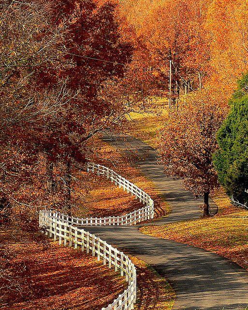 Свадьба - Country Roads....