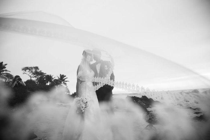 Hochzeit - Wedding Veil - Anna Kim Photography