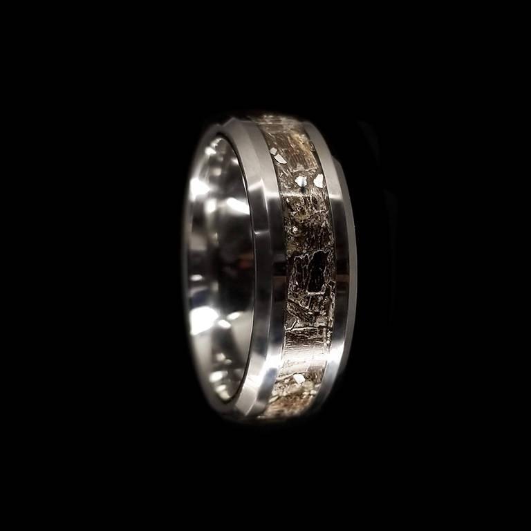 Mariage - Tyrannosaurus Rex, Meteorite Ring, 8mm, Tungsten Wedding Band, Men Ring, Fossil Ring, T-Rex Wedding Band, Tungsten Inlay, Dinosaur Bone Ring