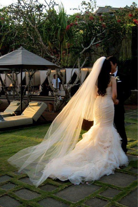 Hochzeit - Cathedral Veil, Veil, Veil with Blusher, Long Veil