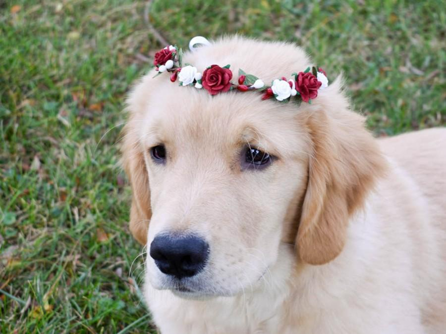 Wedding - Pet flower crown. Fur baby flower crown. Dog floral wreath. Red floral crown.  Pet photo prop crown. White floral crown