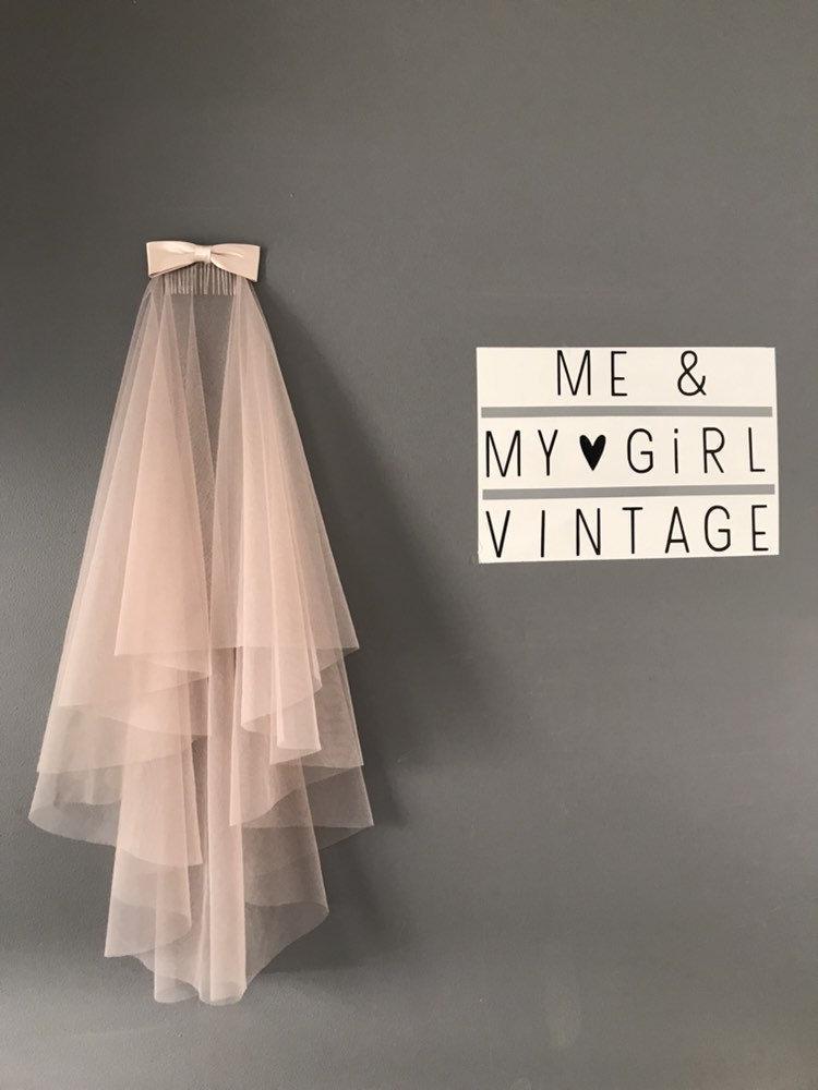 Hochzeit - Blush coloured wedding veil