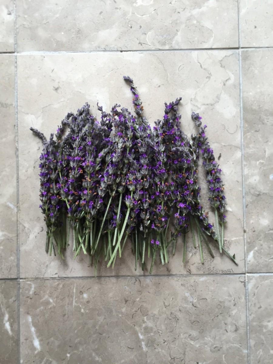 Wedding - Organic Natural Air Dried California USA Lavender