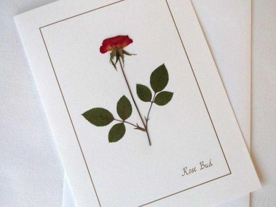 زفاف - Rose Cards, Dried Pressed Flowers, Blank Greeting Cards, Wedding, Birthdays, Thank You Cards, All Occassion Cards, Corporate Gift, Free Ship
