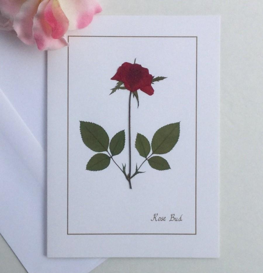 Hochzeit - Pressed flower, rose greeting card, red bloom on white card, personalize for birthday, wedding, anniversary, thank you,  any occasion card