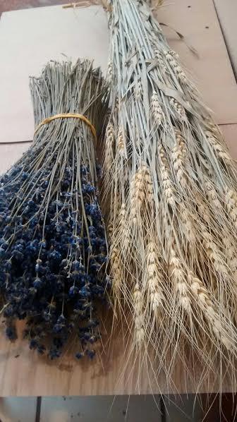 Свадьба - English Lavender Bunches  (20) & Wheat Bunches (20) Dried - Lavender, Dried Wheat, Lavender Bouquets, Lavender, Wholesale Lavender, Weddings