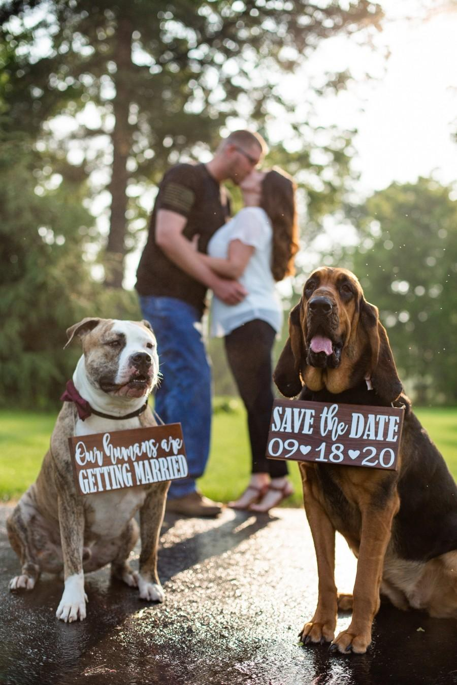 Wedding - Free Shipping!,Our Humans Are Getting Married Wood Signs,Pet Save the Date Sign,I loved her first,Dog Neck Ware, Save the Date Photo Prop