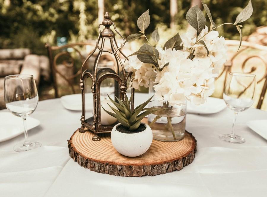 Свадьба - Fresh Cut wood slices! Wood slices for wedding centerpieces rustic wedding decor tree slices wood rounds tree slices bark level wood slices