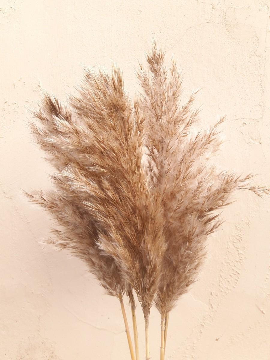 """Mariage - 23.6"""" Large Feather Reed Grass, Decorative Plumes, Natural Dried Plumes, Pampas Reeds, Rustic Wedding, Pampas Grass Decor"""