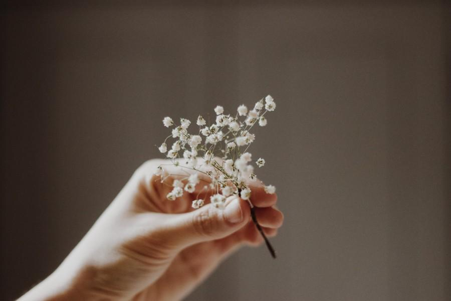 Wedding - Gypsophila Hair Pin, White Baby's Breath Bridal Hair Pin, Real Dried Flowers, Woodland Weddings, Rustic hair pin,