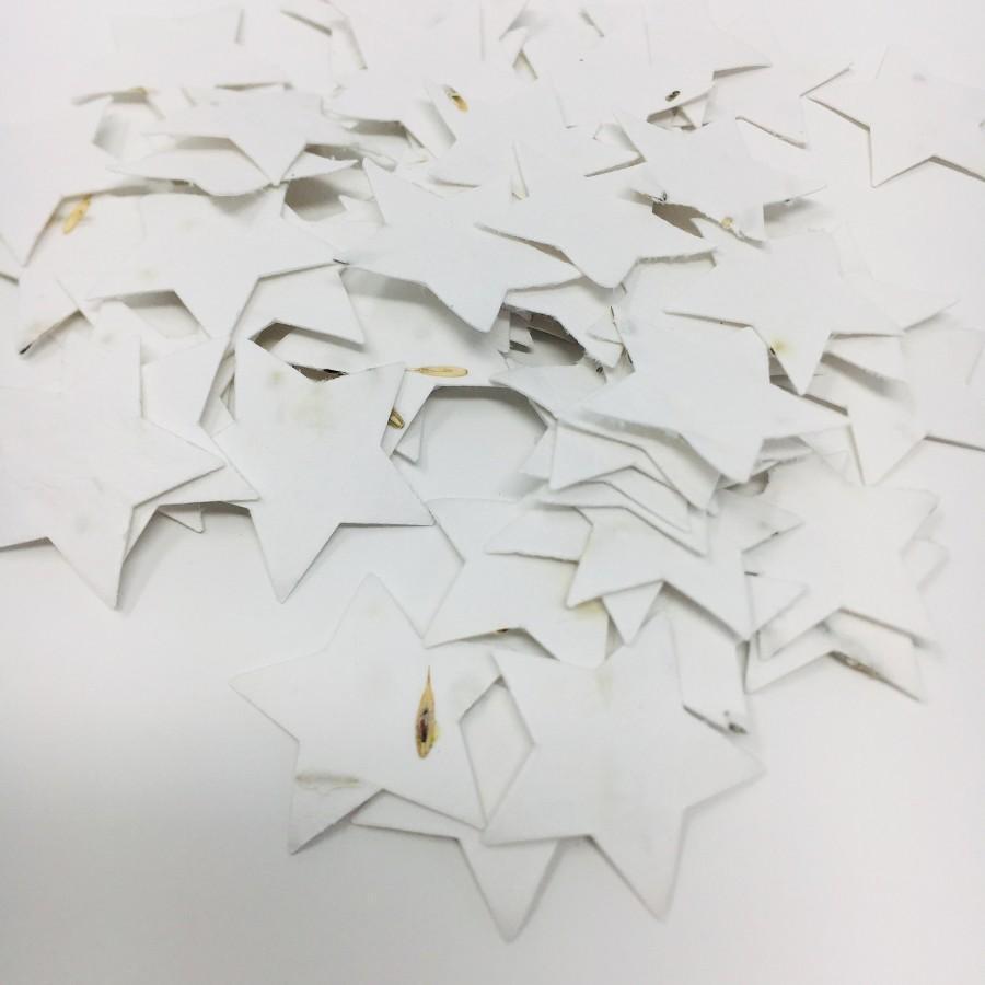Wedding - Plantable Seed Paper Stars Medium